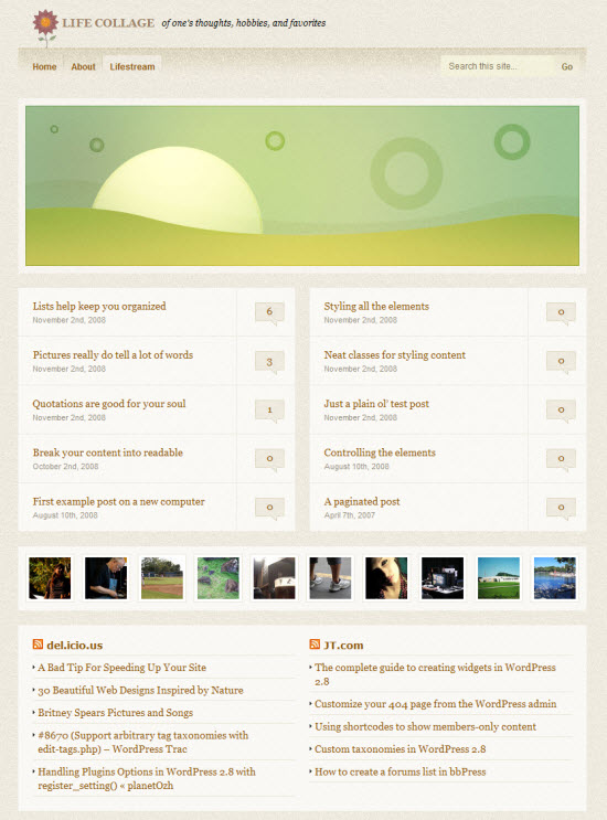 Life Collage WordPress Lifestreaming Theme